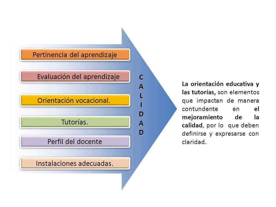 Evaluación del aprendizaje CALIDAD Pertinencia del aprendizaje Orientación vocacional. Tutorías. Perfil del docente Instalaciones adecuadas. La orient