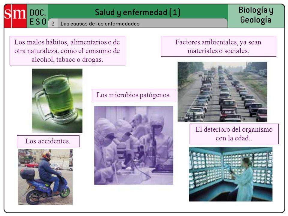 Salud y enfermedad (1) DOC. E S O Biología y Geología 2Las causas de las enfermedades Los malos hábitos, alimentarios o de otra naturaleza, como el co