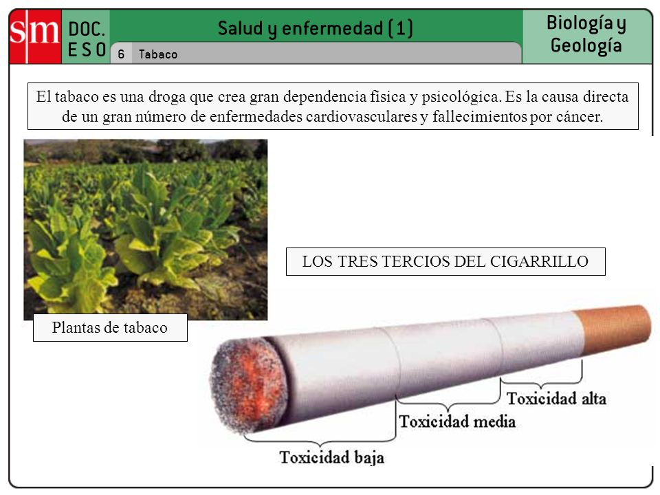 Salud y enfermedad (1) DOC. E S O Biología y Geología 6Tabaco El tabaco es una droga que crea gran dependencia física y psicológica. Es la causa direc