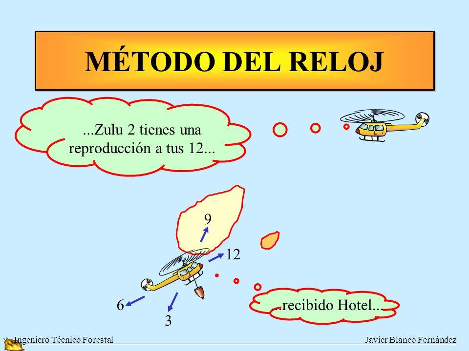 d f REFERENTE AL INCENDIO Dentro-Fuera Metodo de la GRILLA Chilena 6 1 5 2 4 3 9a 9b Ingeniero Técnico Forestal Javier Blanco Fernández