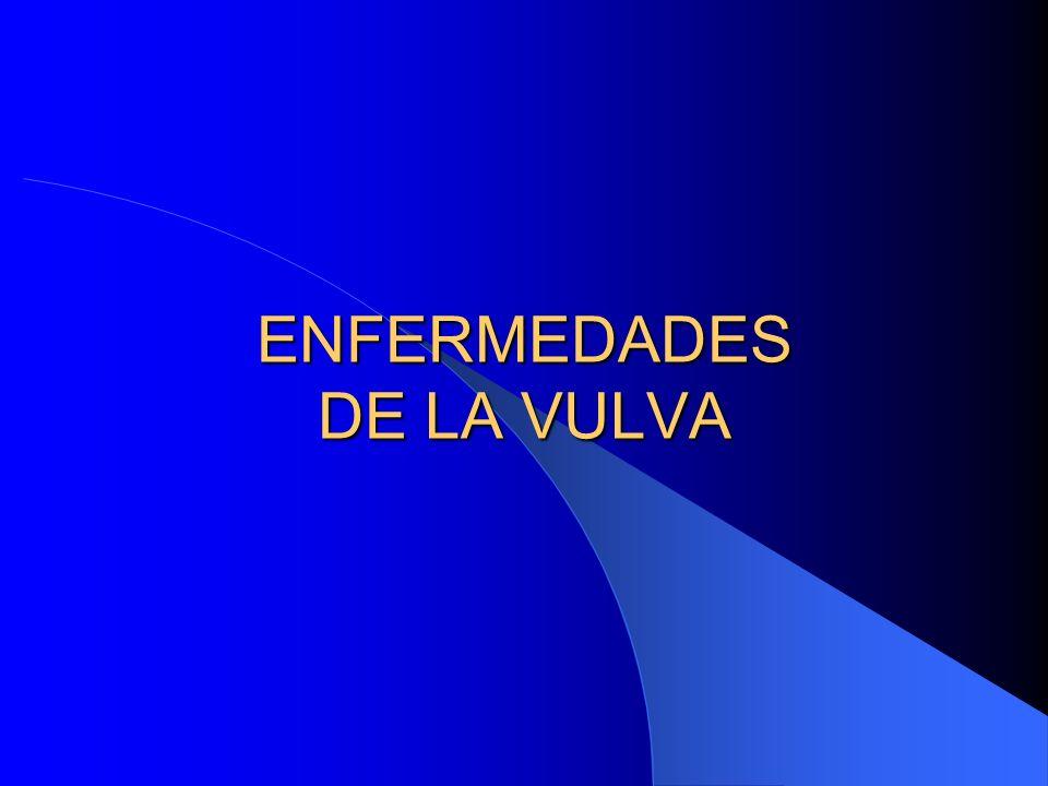 ENFERMEDAD DE PAGET EXTRAMAMARIO Clínica: Lesión rara en vulva y a veces perineal Parecido a Enfermedad de Paget mamario Lesión de aspecto geográfico bien delimitada, roja, pruriginosa y costrosa Se ubica en labios mayores, labios menores y a veces perineal