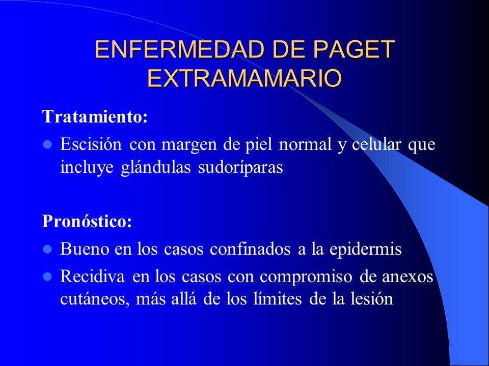 ENFERMEDAD DE PAGET EXTRAMAMARIO Tratamiento: Escisión con margen de piel normal y celular que incluye glándulas sudoríparas Pronóstico: Bueno en los