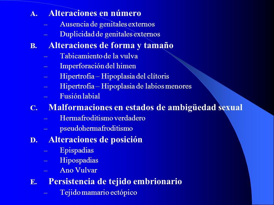 A. Alteraciones en número – Ausencia de genitales externos – Duplicidad de genitales externos B. Alteraciones de forma y tamaño – Tabicamiento de la v