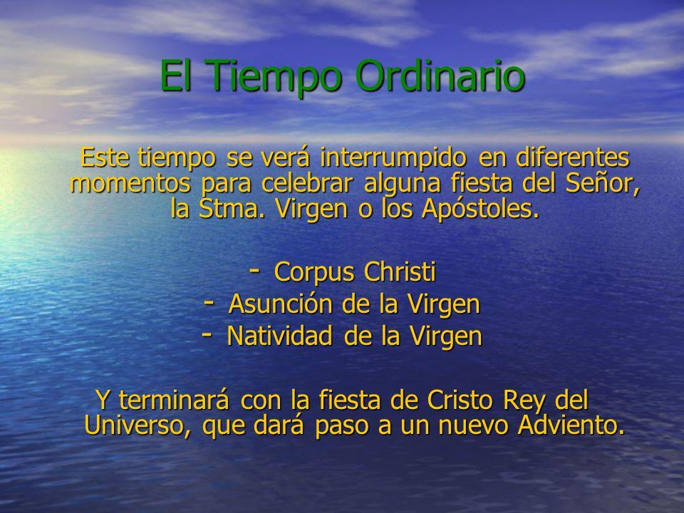 El Tiempo Ordinario Este tiempo se verá interrumpido en diferentes momentos para celebrar alguna fiesta del Señor, la Stma. Virgen o los Apóstoles. -
