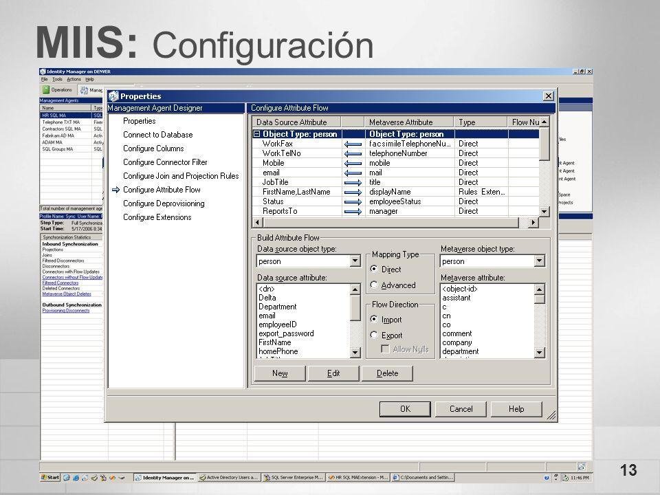 13 MIIS: Configuración