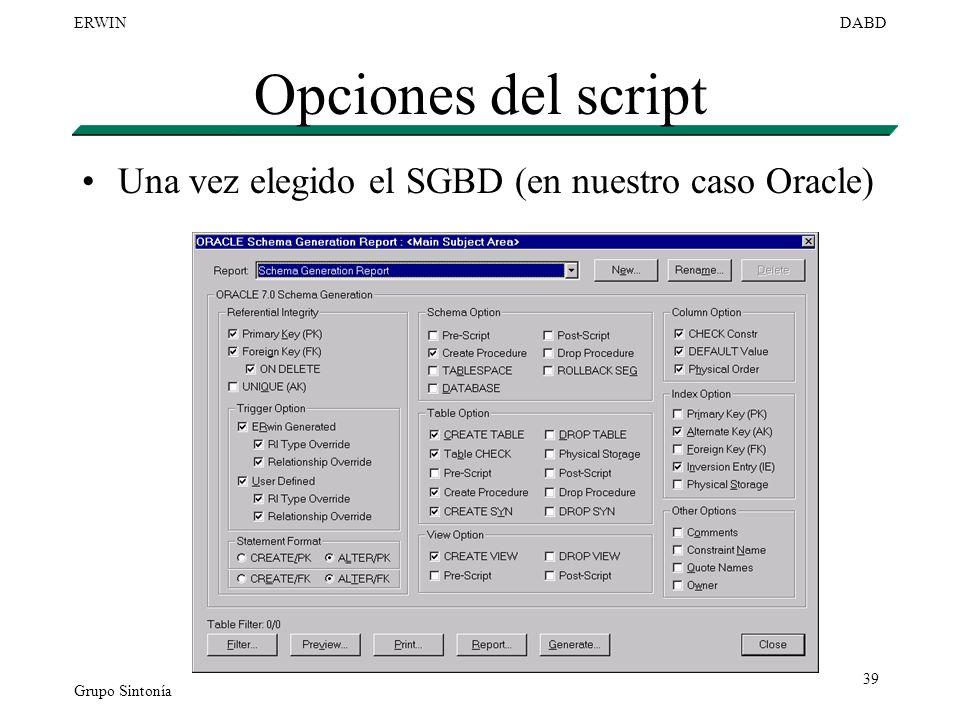 Grupo Sintonía ERWINDABD 39 Opciones del script Una vez elegido el SGBD (en nuestro caso Oracle)