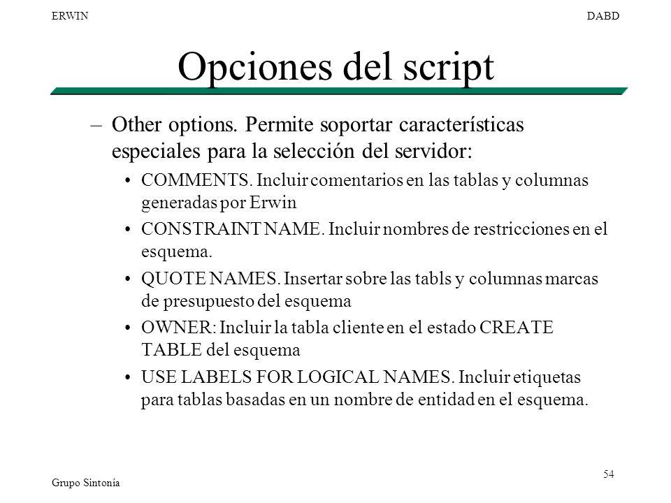 Grupo Sintonía ERWINDABD 54 Opciones del script –Other options. Permite soportar características especiales para la selección del servidor: COMMENTS.