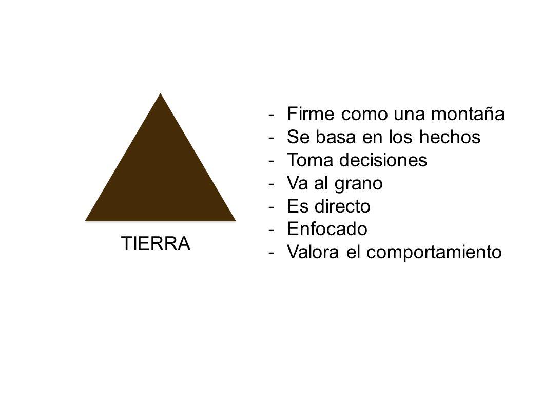 TIERRA -Firme como una montaña -Se basa en los hechos -Toma decisiones -Va al grano -Es directo -Enfocado -Valora el comportamiento