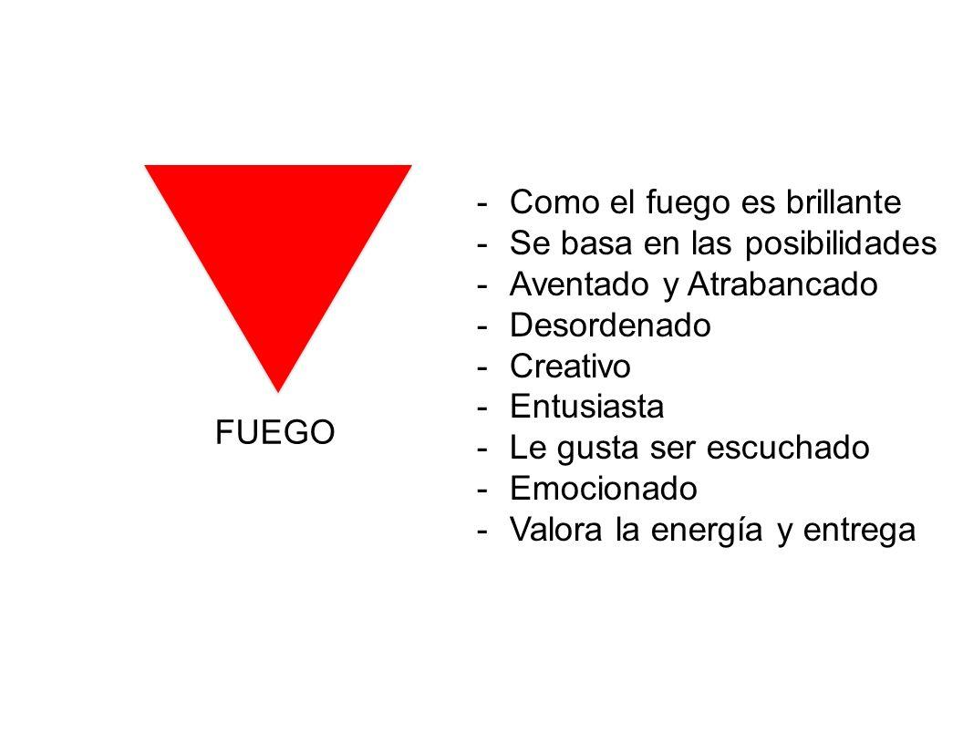 FUEGO -Como el fuego es brillante -Se basa en las posibilidades -Aventado y Atrabancado -Desordenado -Creativo -Entusiasta -Le gusta ser escuchado -Em