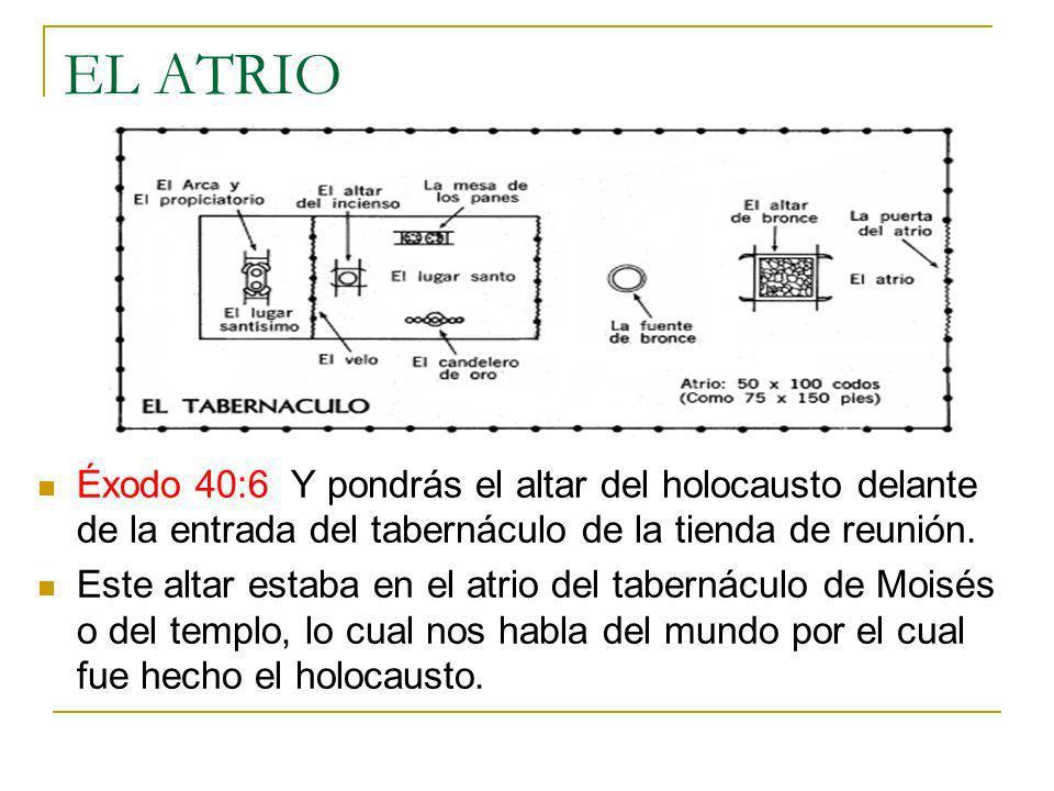 EL ATRIO Éxodo 40:6 Y pondrás el altar del holocausto delante de la entrada del tabernáculo de la tienda de reunión. Este altar estaba en el atrio del