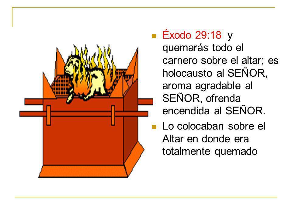 Éxodo 29:18 y quemarás todo el carnero sobre el altar; es holocausto al SEÑOR, aroma agradable al SEÑOR, ofrenda encendida al SEÑOR. Lo colocaban sobr