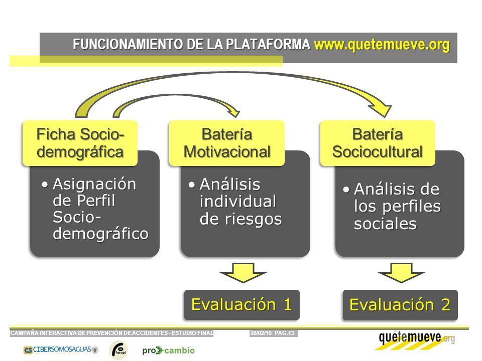 28/02/10 PÁG.13CAMPAÑA INTERACTIVA DE PREVENCIÓN DE ACCIDENTES - ESTUDIO FINAL FUNCIONAMIENTO DE LA PLATAFORMA www.quetemueve.org