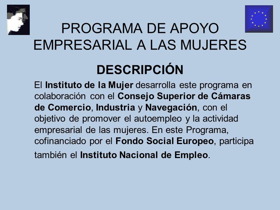 PROGRAMA DE AYUDAS EMPRENDER EN FEMENINO ¿QUÉ OFRECE.
