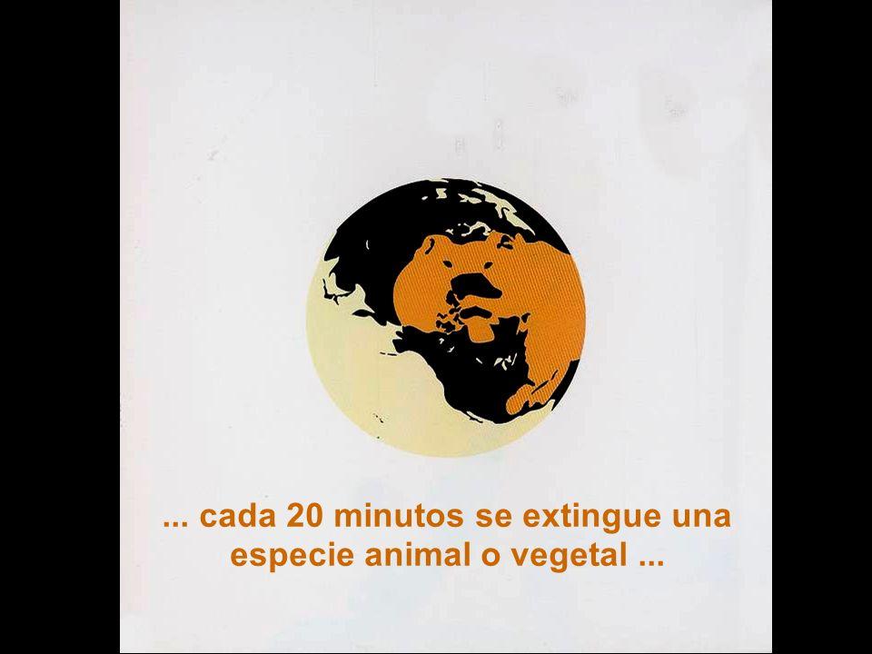 Sesión de Formación - PARTICIPACIÓN PÚBLICA www.transportlearning.net con el apoyo de:... cada 20 minutos se extingue una especie animal o vegetal...