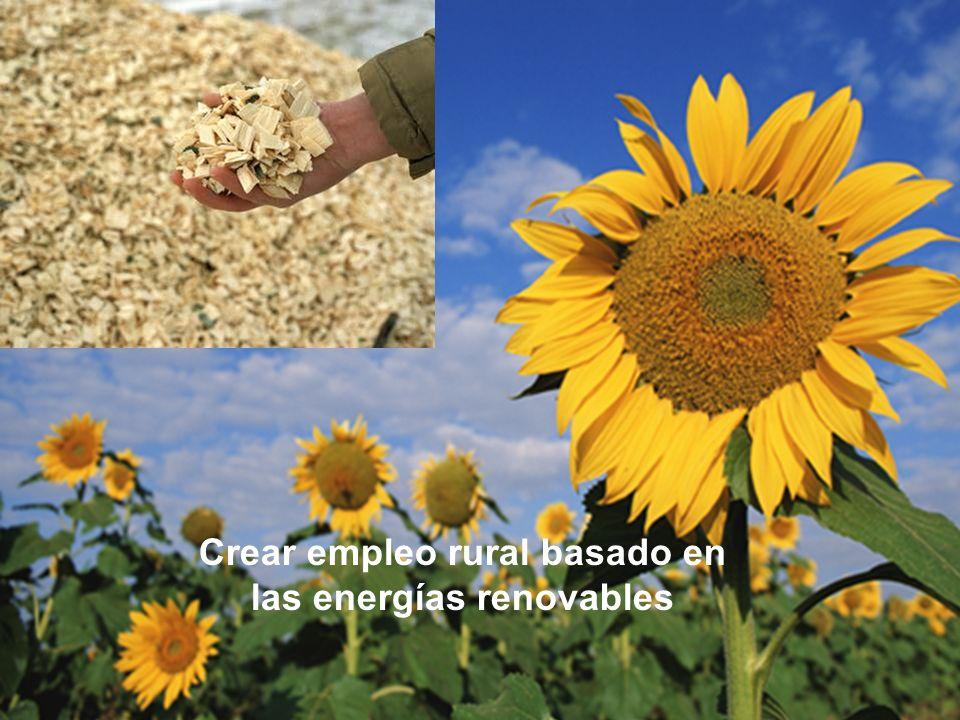 Sesión de Formación - PARTICIPACIÓN PÚBLICA www.transportlearning.net con el apoyo de: Crear empleo rural basado en las energías renovables