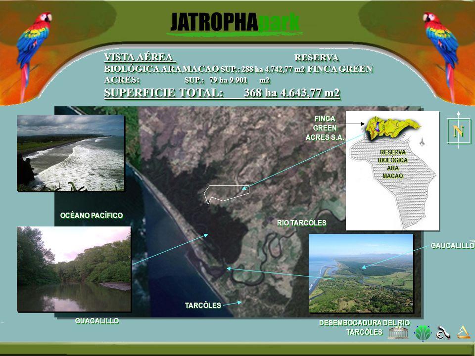 RIO TARCÓLES FINCA GREEN ACRES S.A. VISTA AÉREA RESERVA BIOLÓGICA ARA MACAO SUP.: 288 ha 4.742,77 m2 FINCA GREEN ACRES: SUP.: 79 ha 9.901 m2 SUPERFICI