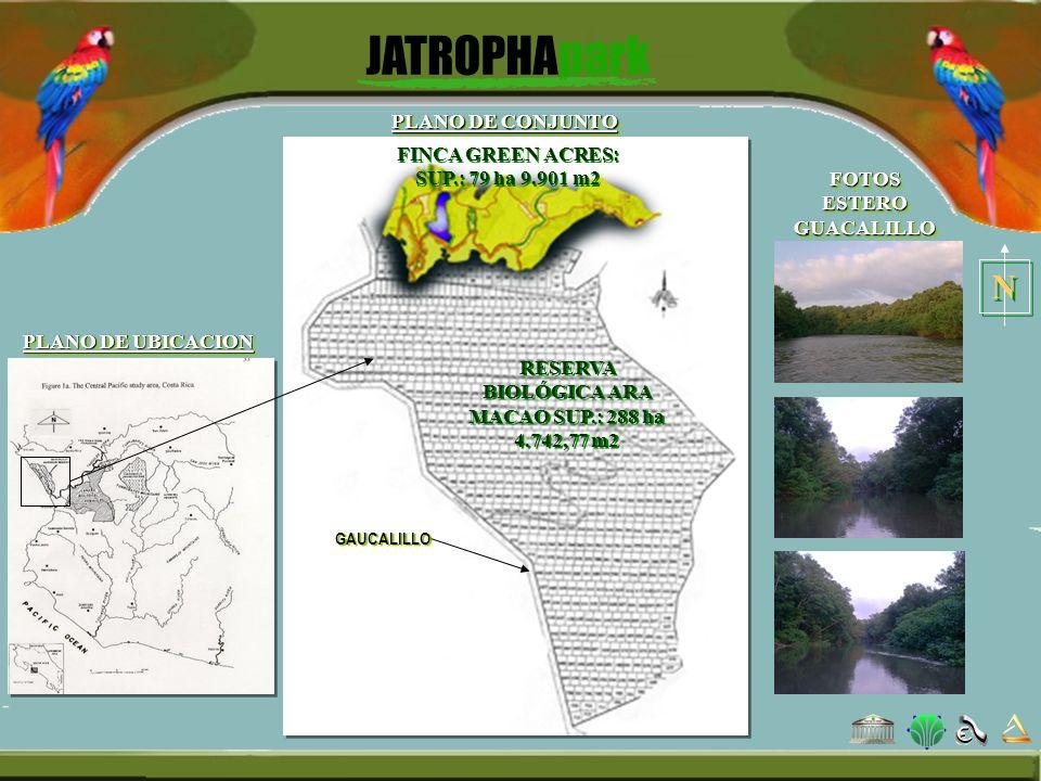 PLANO DE CONJUNTO N N GAUCALILLO RESERVA BIOLÓGICA ARA MACAO SUP.: 288 ha 4.742,77 m2 FINCA GREEN ACRES: SUP.: 79 ha 9.901 m2 PLANO DE UBICACION FOTOS