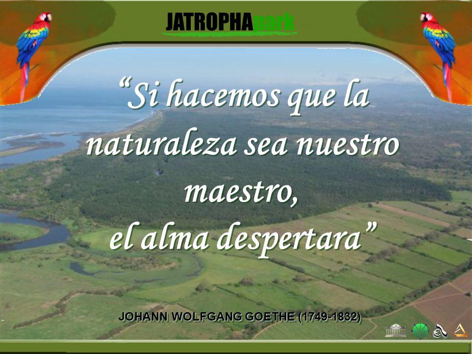 Si hacemos que la naturaleza sea nuestro maestro, el alma despertara JOHANN WOLFGANG GOETHE (1749-1832) Si hacemos que la naturaleza sea nuestro maest
