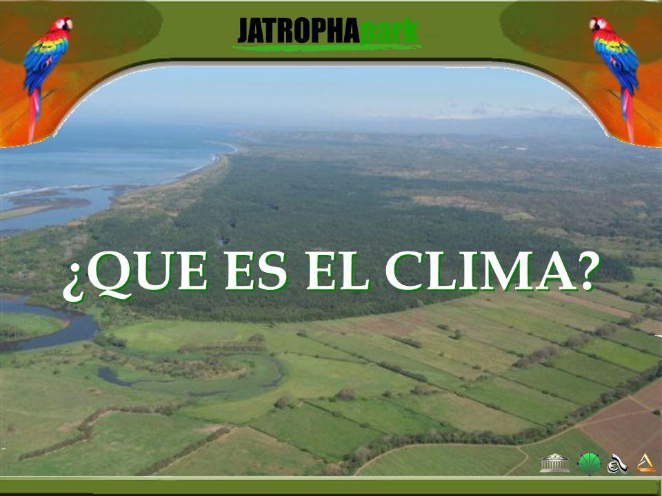 ¿QUE ES EL CLIMA?