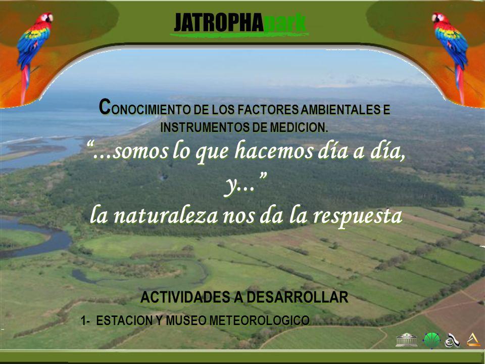 C ONOCIMIENTO DE LOS FACTORES AMBIENTALES E INSTRUMENTOS DE MEDICION....somos lo que hacemos día a día, y... la naturaleza nos da la respuesta ACTIVID