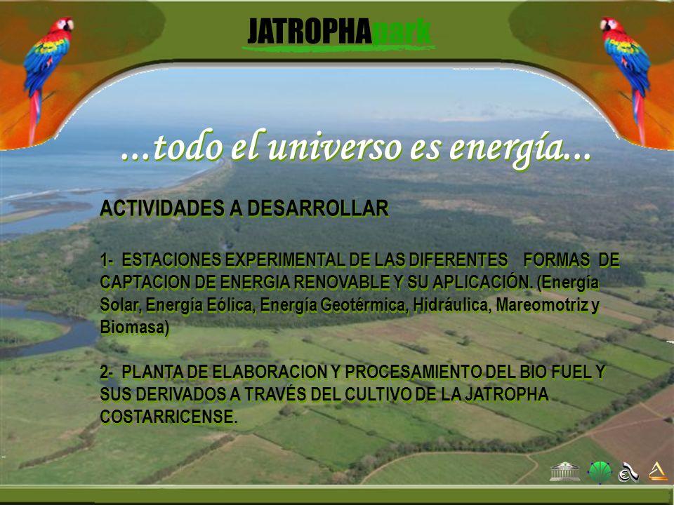 ...todo el universo es energía... ACTIVIDADES A DESARROLLAR 1- ESTACIONES EXPERIMENTAL DE LAS DIFERENTES FORMAS DE CAPTACION DE ENERGIA RENOVABLE Y SU