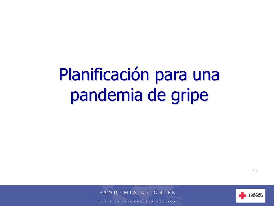 23 Planificación para una pandemia de gripe