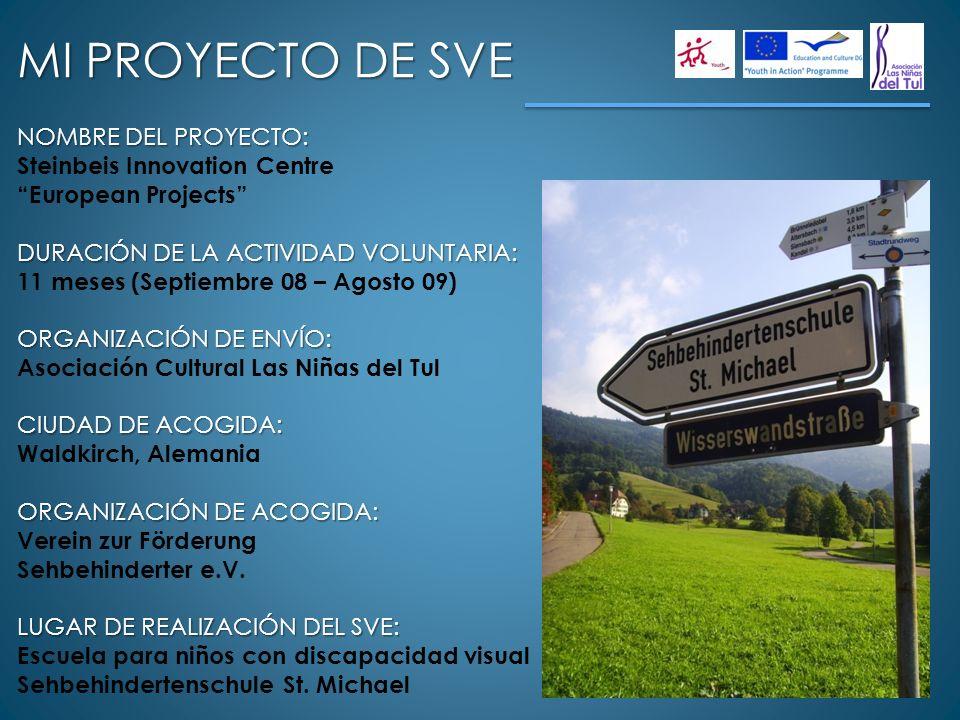 NOMBRE DEL PROYECTO: Steinbeis Innovation Centre European Projects DURACIÓN DE LA ACTIVIDAD VOLUNTARIA: 11 meses (Septiembre 08 – Agosto 09) ORGANIZAC