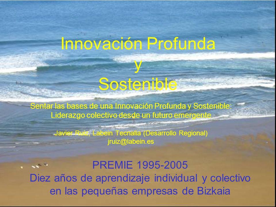 PREMIE 1995-2005 Diez años de aprendizaje individual y colectivo en las pequeñas empresas de Bizkaia Sentar las bases de una Innovación Profunda y Sos