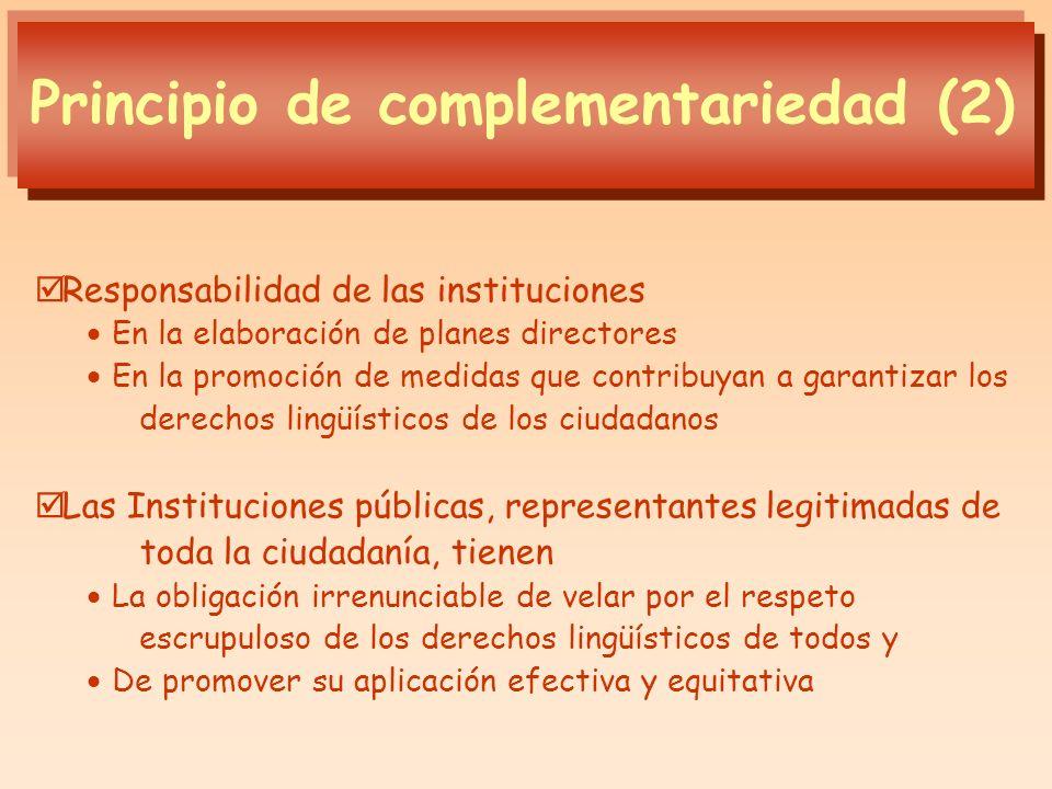 Responsabilidad de las instituciones En la elaboración de planes directores En la promoción de medidas que contribuyan a garantizar los derechos lingü