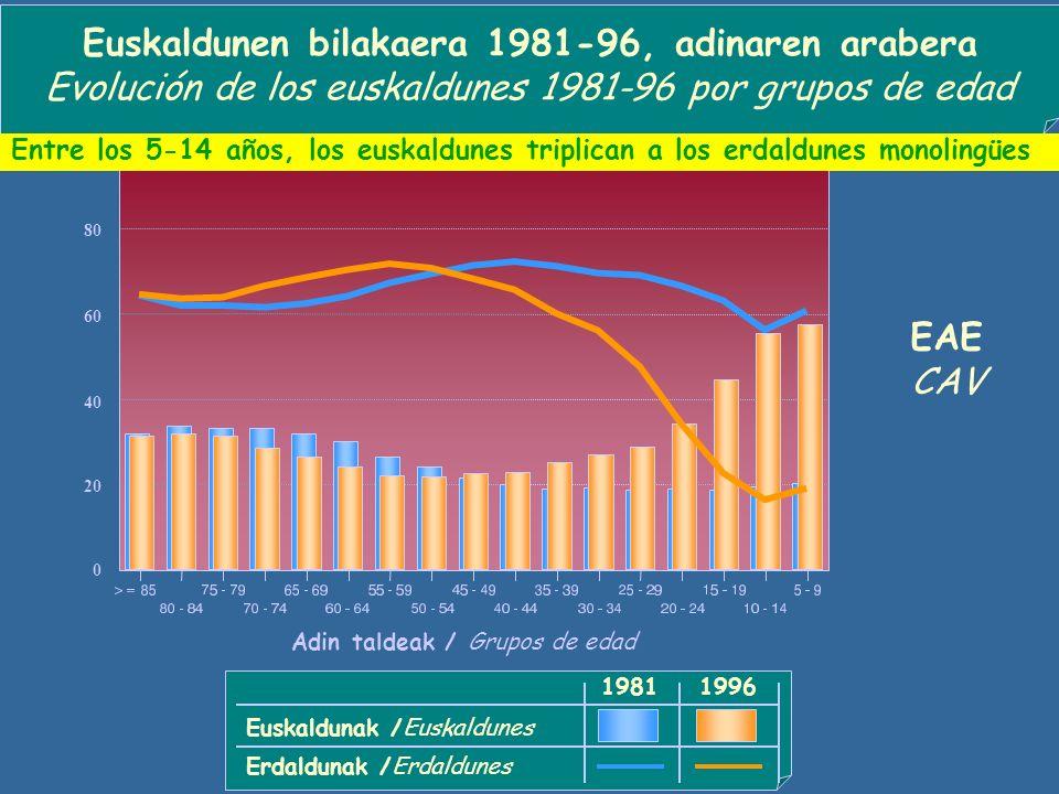 1981 Euskaldunen portzentaia Porcentaje de euskaldunes (%) 1996 Euskaldunen bilakaera 1981-96 udalerrika (EAE) Evolución de los euskaldunes 1981-96 por municipios (CAV) > =80 60 - 79,9 30 - 59,9 15 - 29,9 No hay ningún municipio sin euskaldunes en la CAV 5 - 14,9 < 5