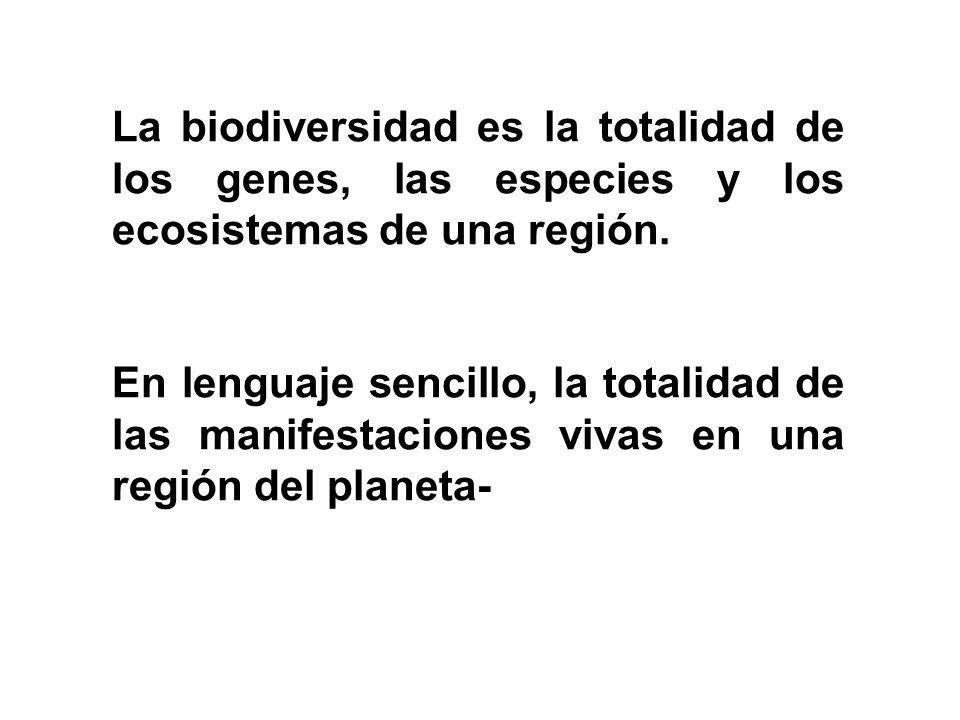 La biodiversidad es la totalidad de los genes, las especies y los ecosistemas de una región. En lenguaje sencillo, la totalidad de las manifestaciones