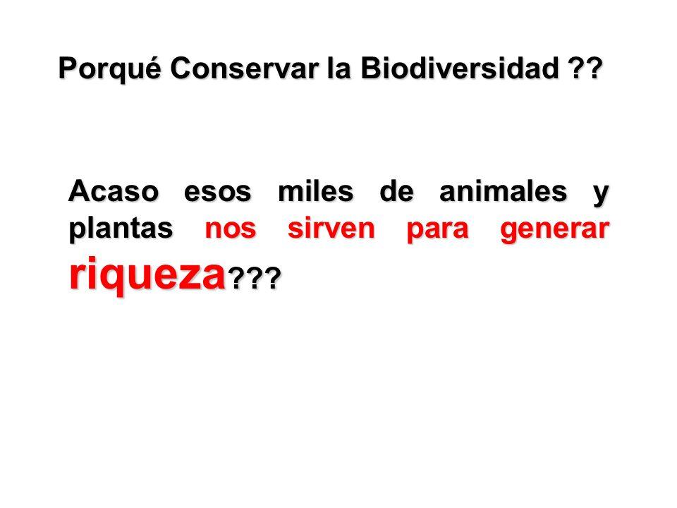 Porqué Conservar la Biodiversidad ?? Acaso esos miles de animales y plantas nos sirven para generar riqueza ???