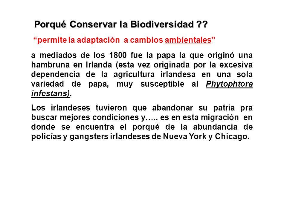 Porqué Conservar la Biodiversidad ?? permite la adaptación a cambios ambientalesambientales En los 1600-1800 Europa se hallaba afectada por lo que hoy