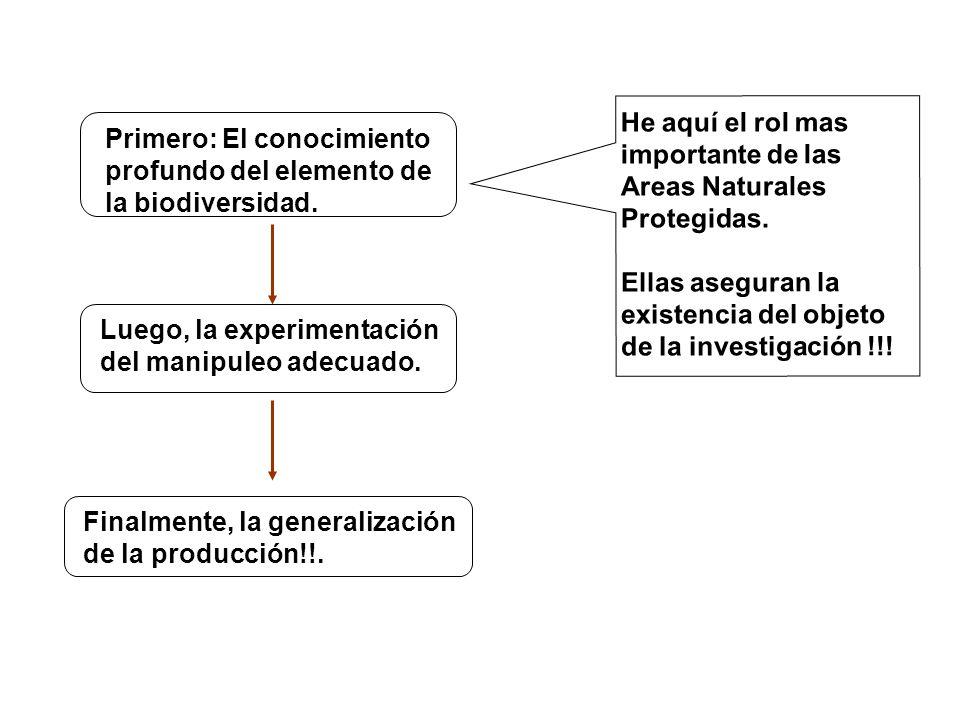 Primero: El conocimiento profundo del elemento de la biodiversidad. Luego, la experimentación del manipuleo adecuado. Finalmente, la generalización de