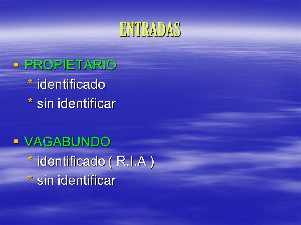 ENTRADAS PROPIETARIO PROPIETARIO * identificado * identificado * sin identificar * sin identificar VAGABUNDO VAGABUNDO * identificado ( R.I.A ) * iden