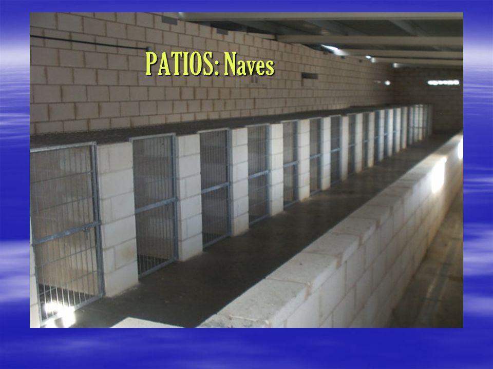 PATIOS: Naves