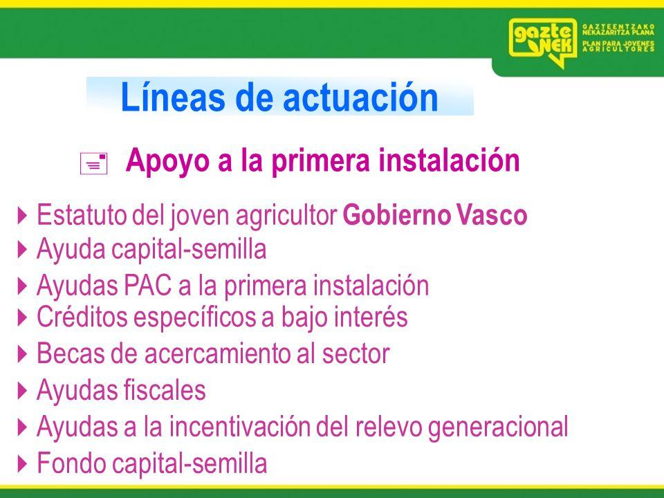 Líneas de actuación Apoyo a la primera instalación Estatuto del joven agricultor Gobierno Vasco Ayuda capital-semilla Ayudas PAC a la primera instalac