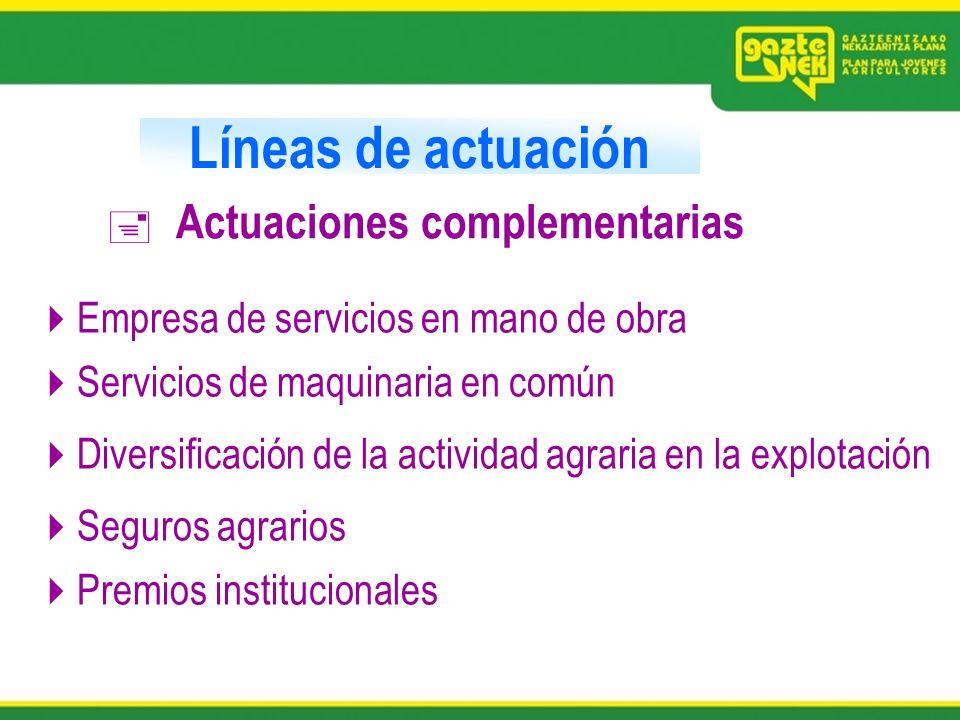 Líneas de actuación Actuaciones complementarias Empresa de servicios en mano de obra Servicios de maquinaria en común Diversificación de la actividad