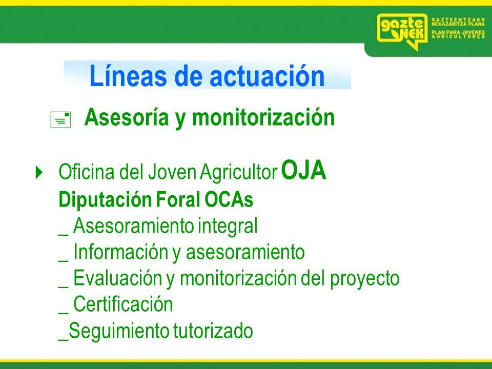 Líneas de actuación Asesoría y monitorización Oficina del Joven Agricultor OJA Diputación Foral OCAs _ Asesoramiento integral _ Información y asesoram