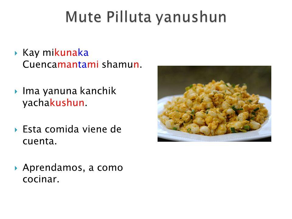 Kay mikunaka Cuencamantami shamun. Ima yanuna kanchik yachakushun. Esta comida viene de cuenta. Aprendamos, a como cocinar.