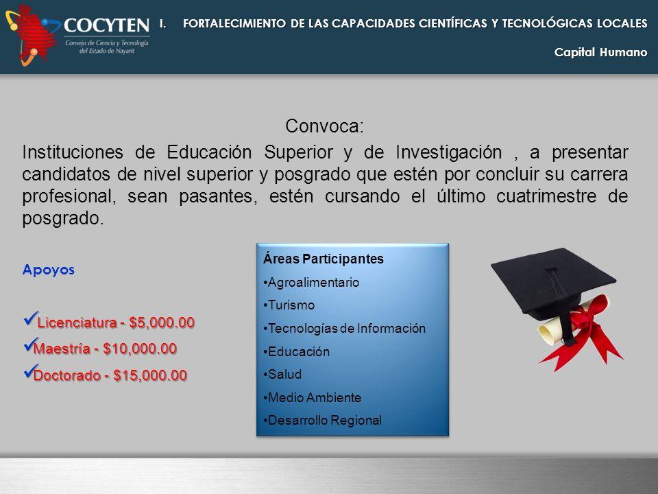 Convoca: Instituciones de Educación Superior y de Investigación, a presentar candidatos de nivel superior y posgrado que estén por concluir su carrera