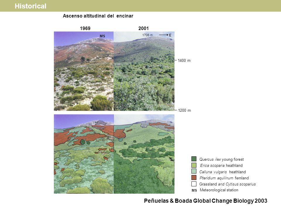 1703 m H B B Beech, H Heathland N Desplazamiento altitudinal (70 m) hasta las cimas 1945 2001 Historical Peñuelas & Boada Global Change Biology 2003