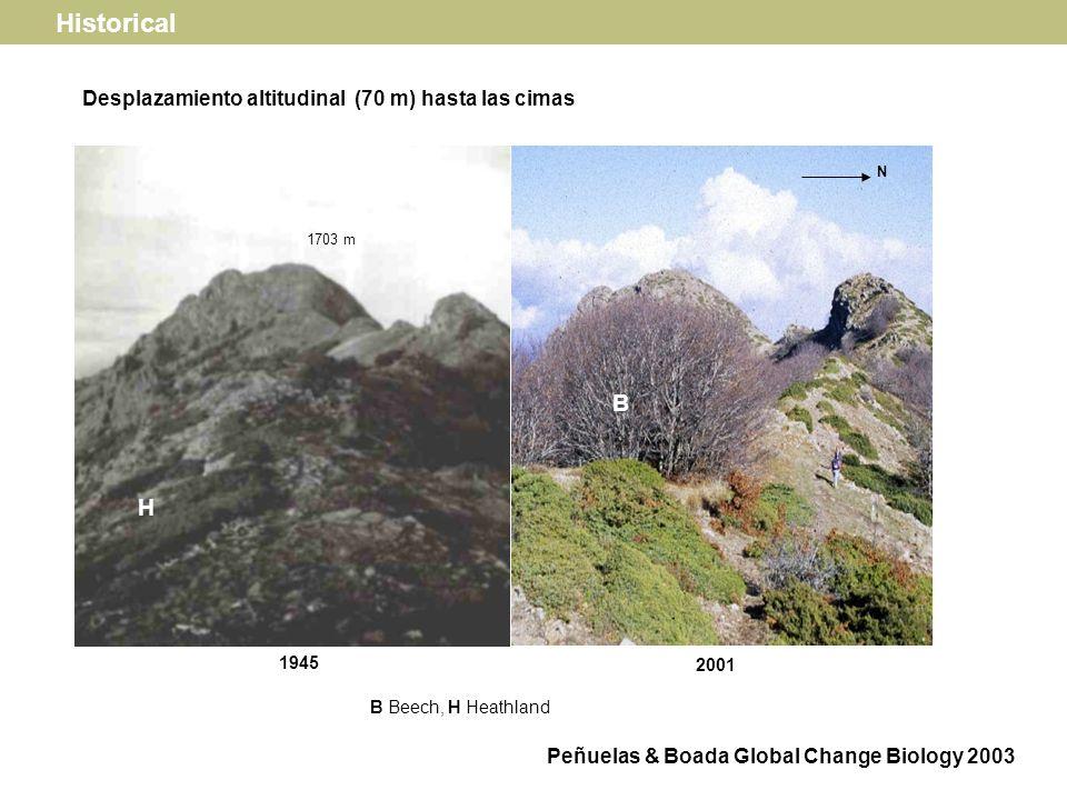 2001 1224 m B HO N B Beech, HO Holm oak Confinamiento del hayedo en las cimas de las montañas Historical Peñuelas & Boada Global Change Biology 2003