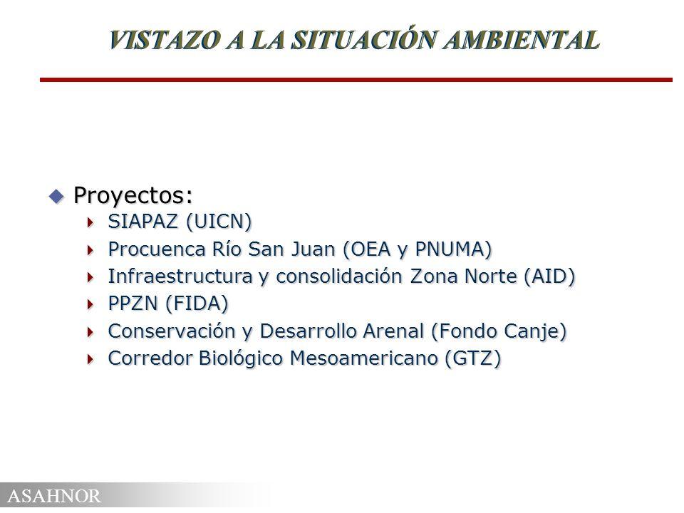 ASAHNOR VISTAZO A LA SITUACIÓN AMBIENTAL u Proyectos: SIAPAZ (UICN) SIAPAZ (UICN) Procuenca Río San Juan (OEA y PNUMA) Procuenca Río San Juan (OEA y P