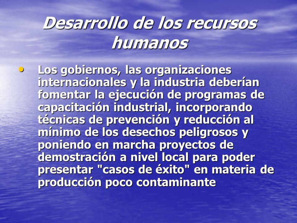 Desarrollo de los recursos humanos Los gobiernos, las organizaciones internacionales y la industria deberían fomentar la ejecución de programas de cap