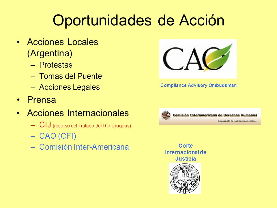 Oportunidades de Acción Acciones Locales (Argentina) –Protestas –Tomas del Puente –Acciones Legales Prensa Acciones Internacionales –CIJ (recurso del