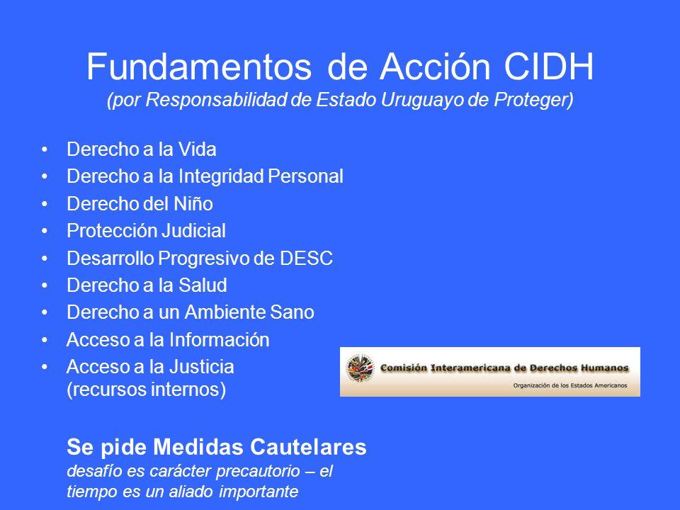 Fundamentos de Acción CIDH (por Responsabilidad de Estado Uruguayo de Proteger) Derecho a la Vida Derecho a la Integridad Personal Derecho del Niño Pr