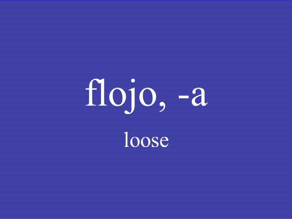 flojo, -a loose