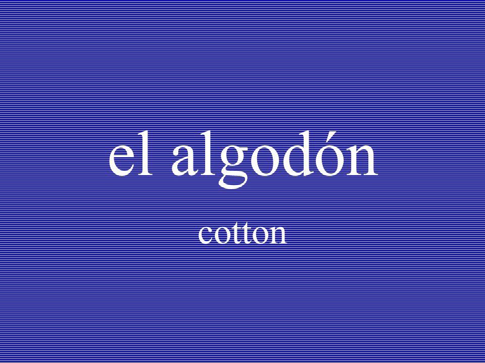 el algodón cotton