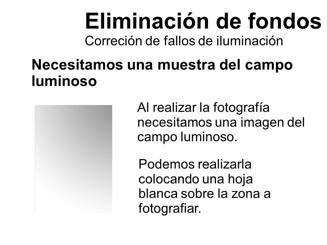 Eliminación de fondos Correción de fallos de iluminación Necesitamos una muestra del campo luminoso Al realizar la fotografía necesitamos una imagen d